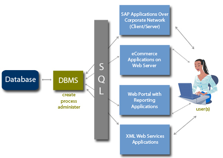 case study database development